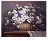 Daisies and Delphiniums Plakater af Victor Santos