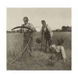 Farmworkers During the Barley Harvest in Suffolk, C. 1883-87 Giclee Print by Peter Henry Emerson