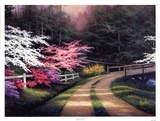 Dogwood Road Prints by Egidio Antonaccio