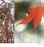 Autumn Leaves I Posters by Jennifer Broussard