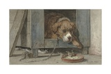 Cat Spies Birds While a Dog Sleeps, C. 1850-90 Giclee Print by Henriette Ronner