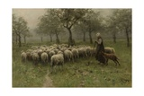 Shepherdess with a Flock of Sheep, C. 1870-88 Giclee Print by Anton Mauve