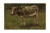 Cow, C. 1860-88 Giclee Print by Anton Mauve