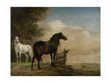 Two Horses in a Meadow Near a Gate, 1649 Giclee Print by Paulus Potter