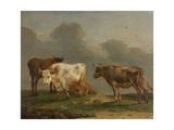 Four Cows in a Meadow, 1651 Giclee Print by Paulus Potter