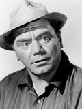 The Flight of the Phoenix, Ernest Borgnine, 1965 Photo