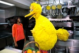 First Lady Michelle Obama with Big Bird in the White House Kitchen, Feb Photo