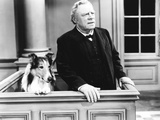 Challenge to Lassie, from Left: Lassie, Edmund Gwenn, 1949 Photo
