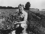 Former Georgia Governor and Future President Jimmy Carter on His Peanut Farm in 1976 Photo