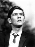 Billy Liar, Tom Courtenay, 1963 Photo