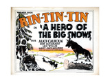 A Hero of the Big Snows, Rin Tin Tin, 1926 Giclee Print