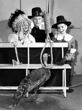 Edgar Bergen with Charlie Mccarthy, from Left: Mortimer Snerd, Edgar Bergen, Charlie Mccarthy, 1950 Photo
