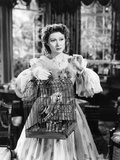 Pride and Prejudice, Greer Garson, 1940 Photo