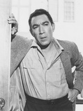 Heller in Pink Tights, Anthony Quinn, 1960 Photo