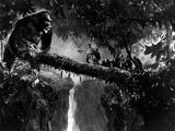 King Kong, Bruce Cabot, 1933 Foto