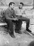 Love Me Tender, Richard Egan, Elvis Presley, 1956 Photo