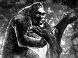 King Kong, Kong with Fay Wray, 1933 Photo