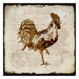 Vintage Rooster Square 1 Prints