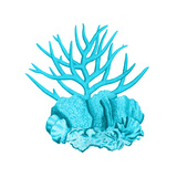 Blue Coral 1 Prints