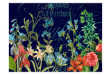 Midnight Garden Prints