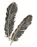 Gold Feathers IV on White Láminas por Chris Paschke