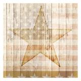 American Stars Art
