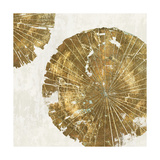 Gold Plate I Prints by  PI Studio