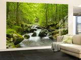Soft Water Stream Non-Woven Vlies Wallpaper Mural - Duvar Resimleri
