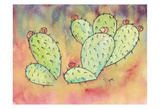 Prickly Pear Cactus Prints