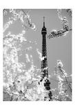 Spring Eiffel BW Affiches