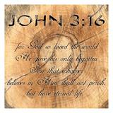 John 3-16 Posters