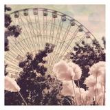 Feathery Ferris Art