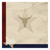Stars and Longhorns Prints