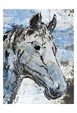 Sketched Rustic Horse Prints
