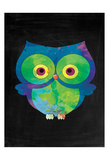 Owl Posters