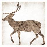 Brown Wood Deer Mate Posters