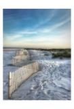 Sand Fence Art