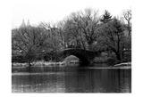Central Park Bridge 2 Posters