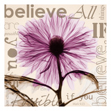 Chrysanthemum Believe Prints