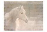 White Knight Serenity Prints
