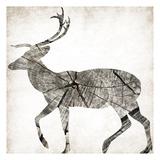 Wood Deer Mate Prints