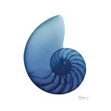 Scenic Water Snail 3 Prints