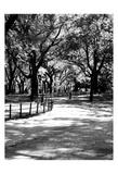 Central Park Walk 2 Prints
