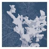 Sea Coral 2 Print