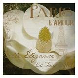 Magnolia Paris Mate Prints