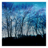 Blue Mountain 1 Print