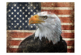 Eagle and Flag Art