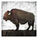 Aged Buffalo Art