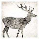 Wood Deer Prints