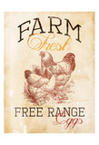 Free Range Eggs Prints